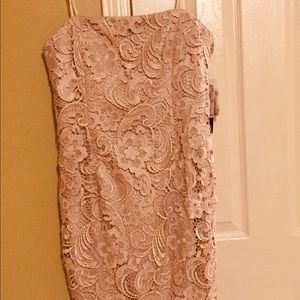 Adrianna Papell strapless lace sheath dress. NWT